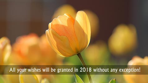 All your wishes will be granted in 2018 without any exception!
