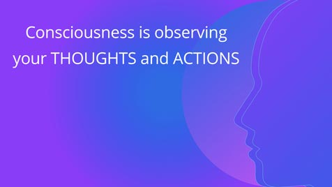 Consciousness is observing your thoughts and actions