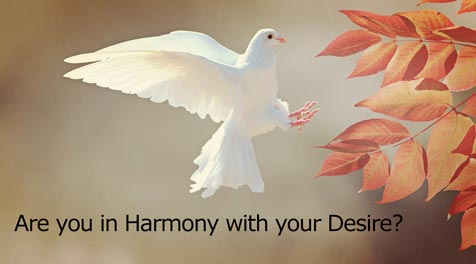 Are you in Harmony with your Desire?