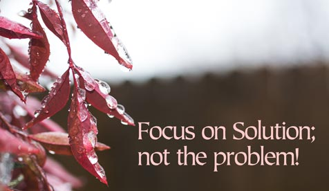 Focus on Solution; not the problem!